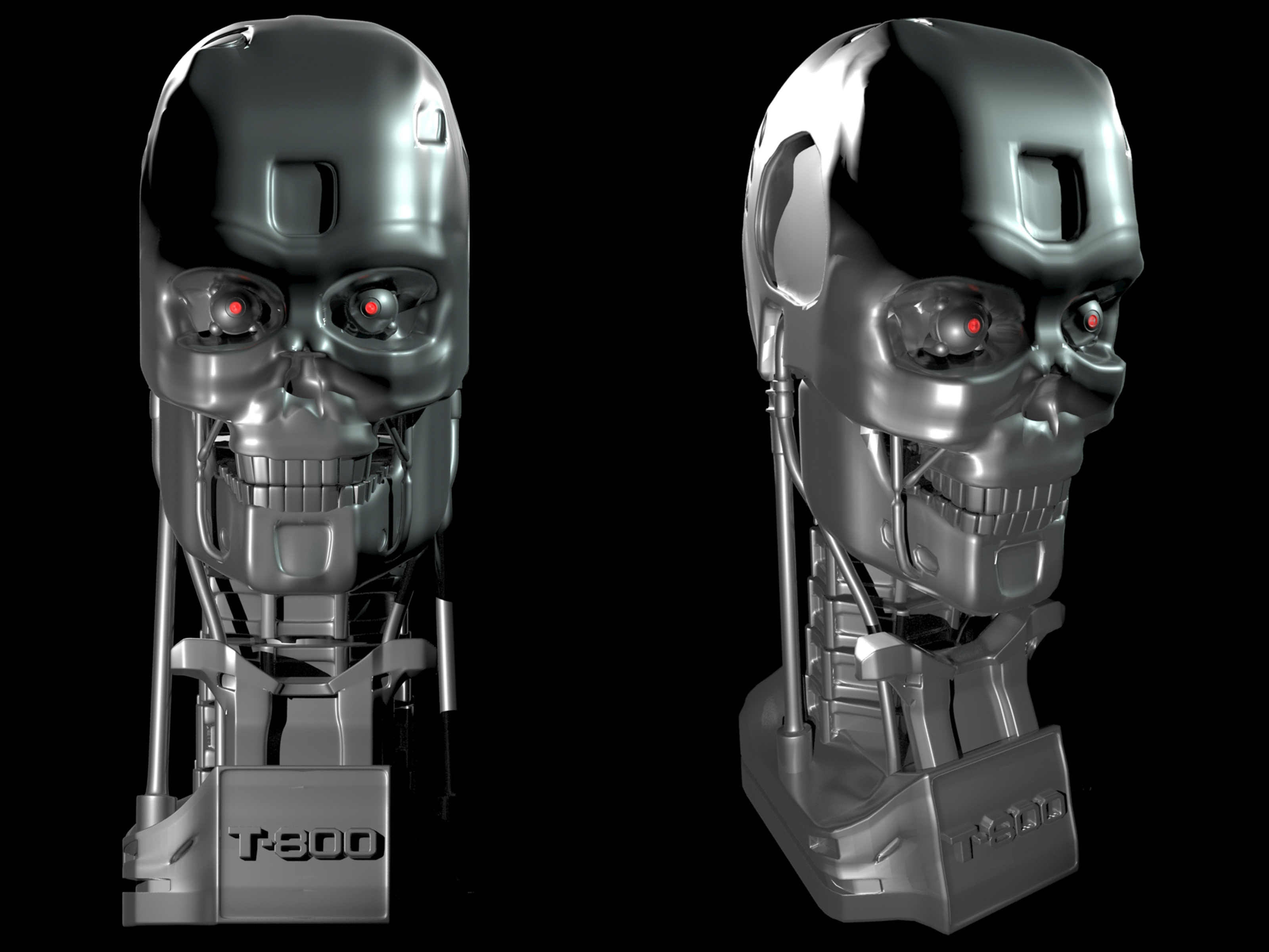 Terminator's Bust